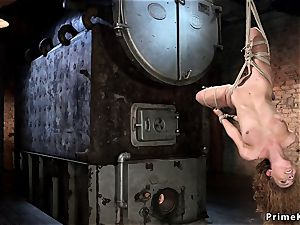 Hogited in upside down suspension caned